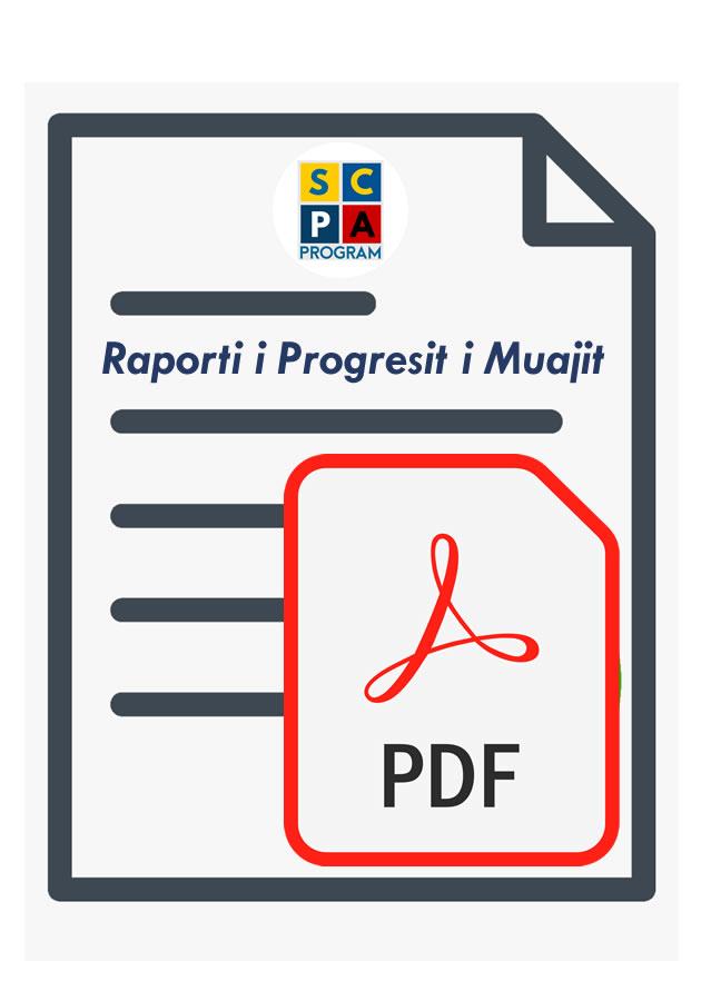 RaportProgres